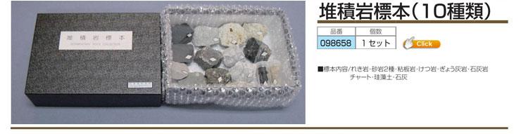 堆積岩標本